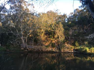 On Golden River